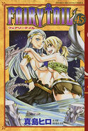 Fairy Tail Portada 45