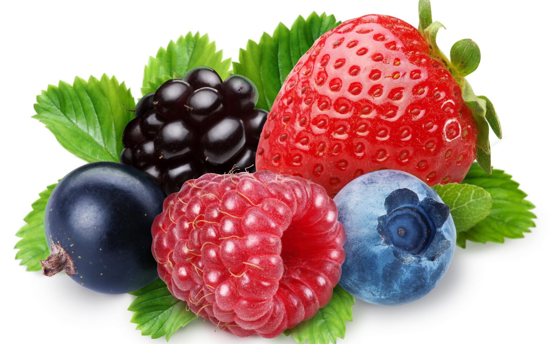 Картинки детей с ягодами