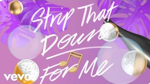 Liam Payne - Strip That Down ft. Quavo (Lyric Video) ft. Quavo