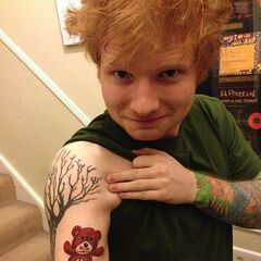 Ed Sheerantattoos Ed Sheeran Wiki Fandom Powered By Wikia