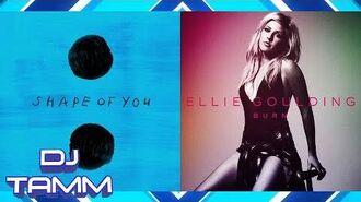 Ed Sheeran vs. Ellie Goulding - Shape of Burn (Shape of You vs. Burn) (Mashup Mix)
