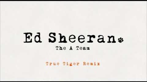 Ed Sheeran - The A Team (True Tiger Remix)