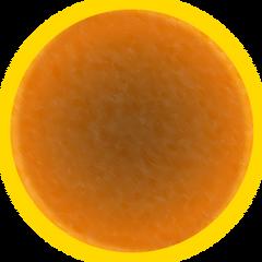 Fg856569