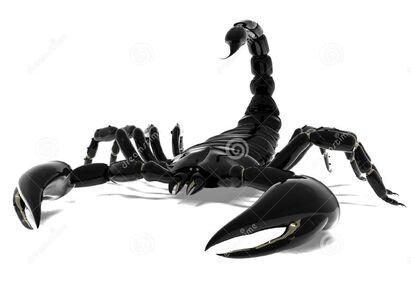 Сайлент скорпион