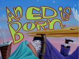 An Ed is Born