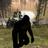 StrangeThingsGonnaHappen's avatar