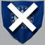 CTF icon flag blue taken