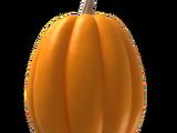 Pumpkin Egg