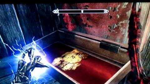 Elder Scrolls Skyrim - Magic Paper