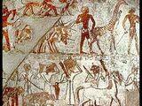 Ancient Egypt and Sub-Saharan Africa
