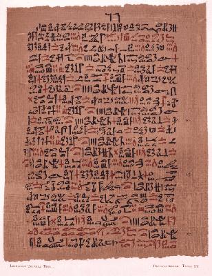 Papyrus4233