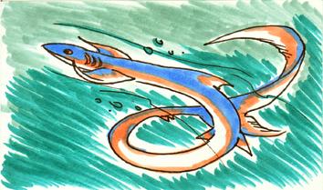 Asagi sketch card