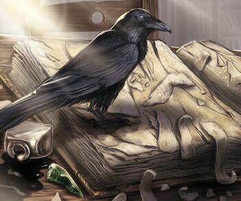 MormontsRabe DimitriBielak