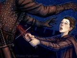 A Clash of Kings - Kapitel 14 - Arya IV