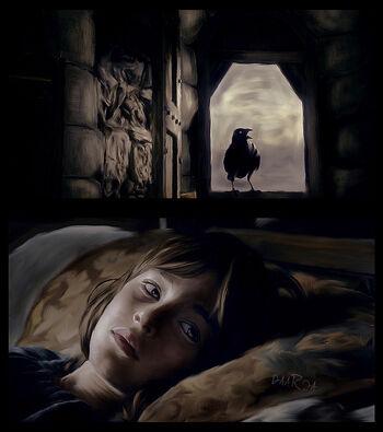 Bran Rabe daaria