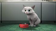 Ejen Comot Cat Bowl