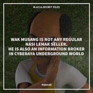 MATA Secret Files - 7