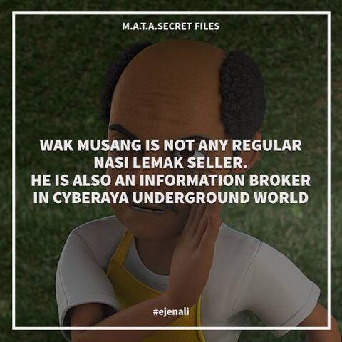 Fail:MATA Secret Files - 7.jpg
