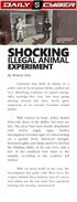 Illegal Animal Experiment News (2)