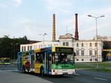 Linia autobusowa nr 50 (Zielona Góra)