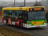 Linia autobusowa nr 30 (Zielona Góra)