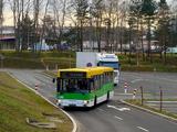 Linia autobusowa nr 55 (Zielona Góra)