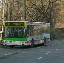 Mzkzgora-16