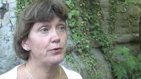 Lena Sommestad om Europas finanspolitiska kris - Almedalen 2010