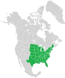 Unión Americana (subdivisión territorial)