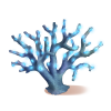 Coral Luminoso