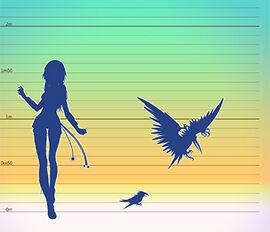 Tamaño pterocorvus
