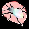 Escarabajo Irisado