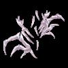 Skarpetki Queen spider 4