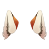 Clothing Fox Ears