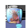 Anémone rouge