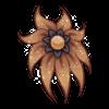 Kwiat Shy Nenuphar 5