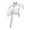 Clothing Skeleton Witch Top