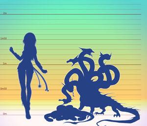 Hydra tamanho