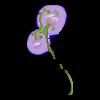 Lampa kwiaty spring faerie