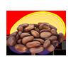 Ziarna kakaowca miłości