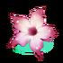 Seltene Blume