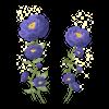 TH Kwiaty3