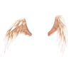 Clothing Star Angel Wings