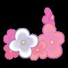 KwiatyNoga6