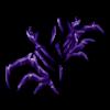 Skarpetki Queen spider 11