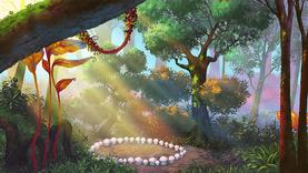 4Las - Krąg grzybów