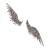 Twisted Harpy Wings