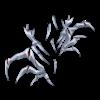 Skarpetki Queen spider 3