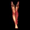 https://www.eldarya.com.br/static/img/item/player/web_portrait/2e90f8c37e1e3587f2bd6e545404baf4~1491844506