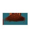 Nasiona czterolistnej koniczyny